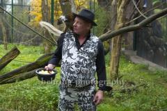 """""""Ben Becker - Affe"""", Pressekonferenz zum neuen Programm im Admiralspalast (18. - 20. 02.2020), mit Mohrenmaki im Freigehege vom Affenhaus im Tierpark, Berlin, 26.11.2019"""