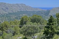"""""""Pollenca"""", Blick vom Puig de Santa Maria, Berg suedlich von Pollenca, einer Kleinstadt im Nordwesten von Mallorca, 23.06.2016 (Photo: Christian Behring)"""