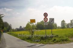 Wiese mit Loewenzahn am Ortseingang zu Chemnitz-Rabenstein, Chemnitz, 02.05.2019