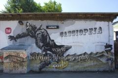 """Cassiopeia, """"RAW-Gelaende an der Revaler Strasse"""", Berlin, 2013"""