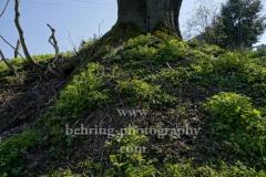 Rabenstein zu Ostern, Chemnitz, 16.04.2019 (Photo: Christian Behring)