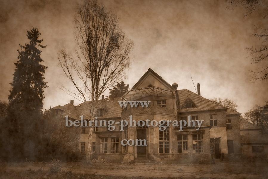 Heilstätten, Grabowsee, 17.11.2013 (Photo: Christian Behring)